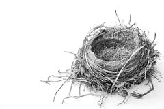 Bird& x27; ninho de s em preto e branco Fotografia de Stock Royalty Free