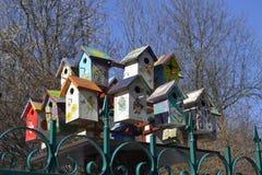 Bird& x27; s huizen Royalty-vrije Stock Afbeelding