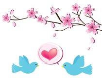 bird2 miłość Zdjęcia Royalty Free