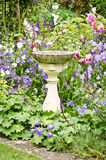 Birdbath. A concrete birdbath in an english garden Royalty Free Stock Photo