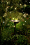 Birdbath depiction. Birdbath at night with fireflies depiction Royalty Free Stock Image