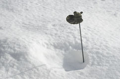 Birdbath in snow. Small birdbath on snow background Royalty Free Stock Photo