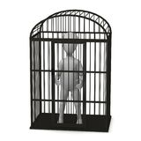 Birdcage illustration libre de droits