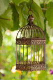 Birdcage. Empty birdcage hanging outdoors on green leaf background Stock Photos