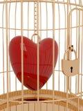 Birdcage Foto de archivo libre de regalías