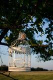 birdcage Stockfotos