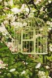 birdcage Images libres de droits