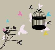 Birdcage Stock Photos