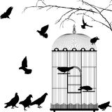 Birdcage and birds. Silhouettes over white background Royalty Free Stock Image