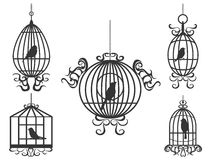 Birdcage with birds vector Stock Photo