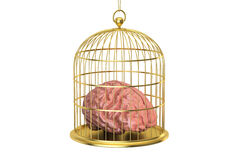 Birdcage with a brain inside, 3D rendering. On white background Stock Photo