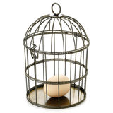 Birdcage and egg. Egg in birdcage on white background Stock Photos