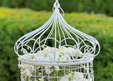 Birdcage with flowers i. Nside, hanging on a branch in green, fresh spring garden Royalty Free Stock Photography