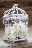 Birdcage with flowers inside on rustic wood Royalty Free Stock Photos
