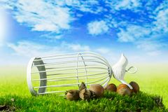 Birdcage and hazelnuts on the green fantasy meadow. Birdcage and hazelnuts on the green fantasy landscape Stock Image
