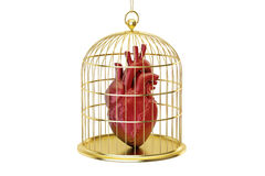 Birdcage with human heart, 3D rendering Royalty Free Stock Image
