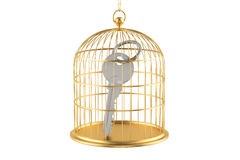 Birdcage with key inside, 3D rendering Royalty Free Stock Photography