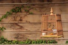 Birdcage mit hölzernem Hintergrund Stockfotos