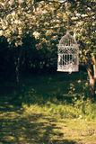 Birdcage In The Orchard Stock Photography