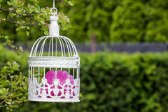 Birdcage with pink flowers inside Royalty Free Stock Images
