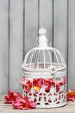 Birdcage with pink flowers inside Royalty Free Stock Image
