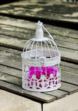 Birdcage with pink flowers inside Royalty Free Stock Photography