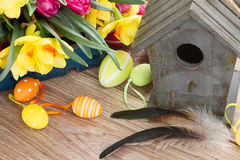 Birdcage with tulips and daffodils Royalty Free Stock Photo
