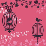 Birdcage. The vector illustration of Birdcage and flowers Royalty Free Stock Photography