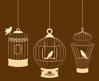 Birdcages and birds Stock Images