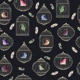 Birdcages und Federn Stockfotografie