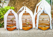Birdcages at the Yuen Po Street Bird Garden in Hong Kong. The Bird Garden has dozens of stalls selling exotic birds, beautifully crafted bamboo cages stock image