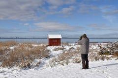Birder побережьем в сезоне зимы стоковые изображения