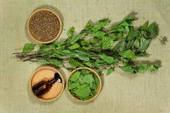birders Ξηρά φυτά Βοτανική ιατρική, phytotherapy ιατρικά χορτάρια στοκ φωτογραφία