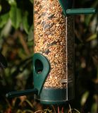 Birdfeeder. A plastic bird feeder with seed inside it hanging in a garden Stock Image