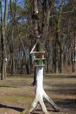 Birdfeeder. Structure in the garden in summertime Stock Photo