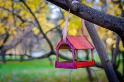 Birdfeeder. In the park. Autumn, october Stock Images