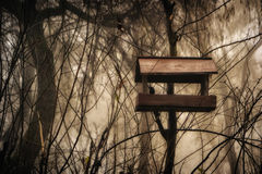 Birdfeeder placed in a park. Birdfeeder device mounted on a tree in a park Royalty Free Stock Photo