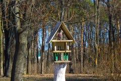 Birdfeeder. Structure in the garden in summertime Royalty Free Stock Photos