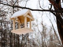 Birdfeeder on tree branch in woods in winter. Hand made wooden birdfeeder on tree branch in woods in winter Royalty Free Stock Image