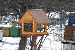 Birdfeeder in winter. Birdfeeder in a winter garden Stock Images