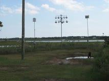 Birdfeeders dichtbij zoutwatermoeras en water in Charleston South Carolina Stock Fotografie