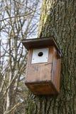 Birdhaus Fotografia Stock Libera da Diritti