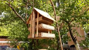 Birdhouse για τα πουλιά που κρεμούν σε ένα δέντρο στοκ φωτογραφίες
