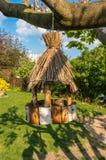 Birdhouse για τα πουλιά στο δέντρο Στοκ Φωτογραφία