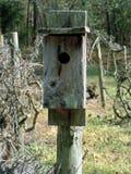 Birdhouse μεταξύ των αμπέλων Στοκ φωτογραφία με δικαίωμα ελεύθερης χρήσης