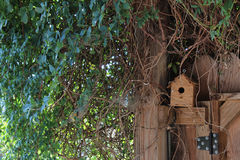 Birdhouse σε μια γωνία ενός φράκτη Στοκ εικόνες με δικαίωμα ελεύθερης χρήσης