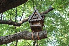 Birdhouse στο δέντρο Στοκ Εικόνα