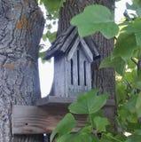 Birdhouse στο δέντρο στοκ εικόνες
