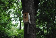 Birdhouse στο πάρκο πόλεων Στοκ Εικόνες