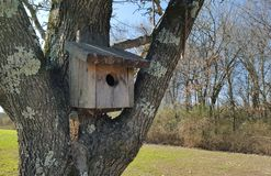 Birdhouse в снежке Стоковое Изображение RF